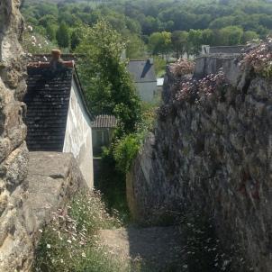 15) Vue au dessus un escalier en pierre qui monte à côté du jardin